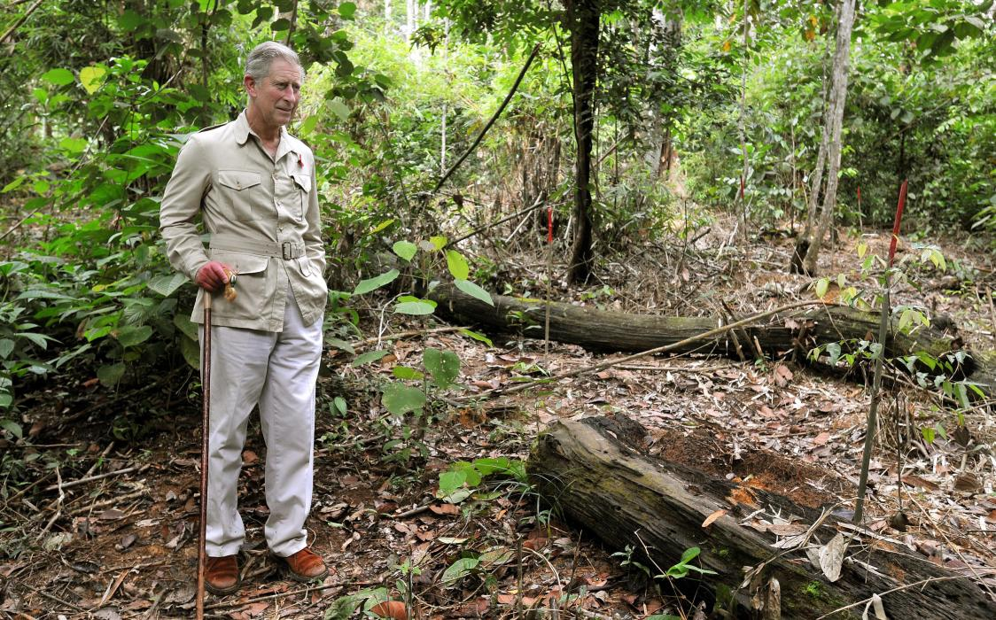 The Prince of Wales visits the Harapan Rainforest in Indonesia