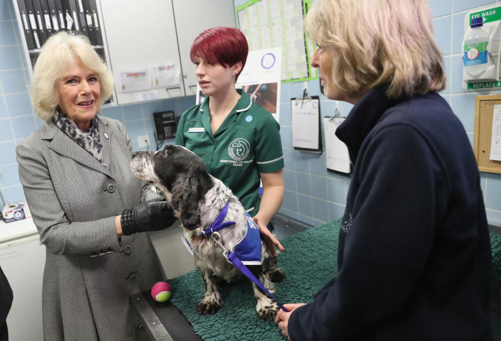 The Duchess of Cornwall visits Battersea Dogs and Cats Home Old Windsor