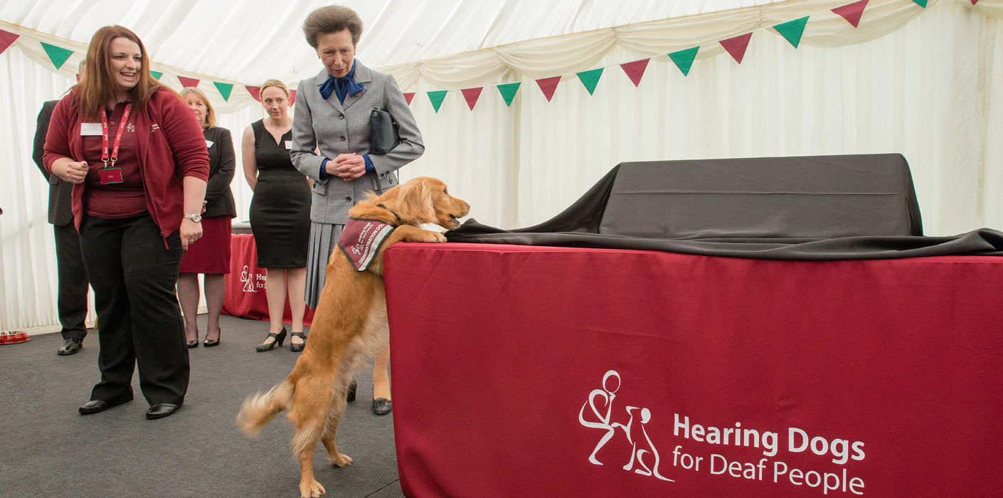 The Princess Royal Visits Hearing Dogs For Deaf People The Royal