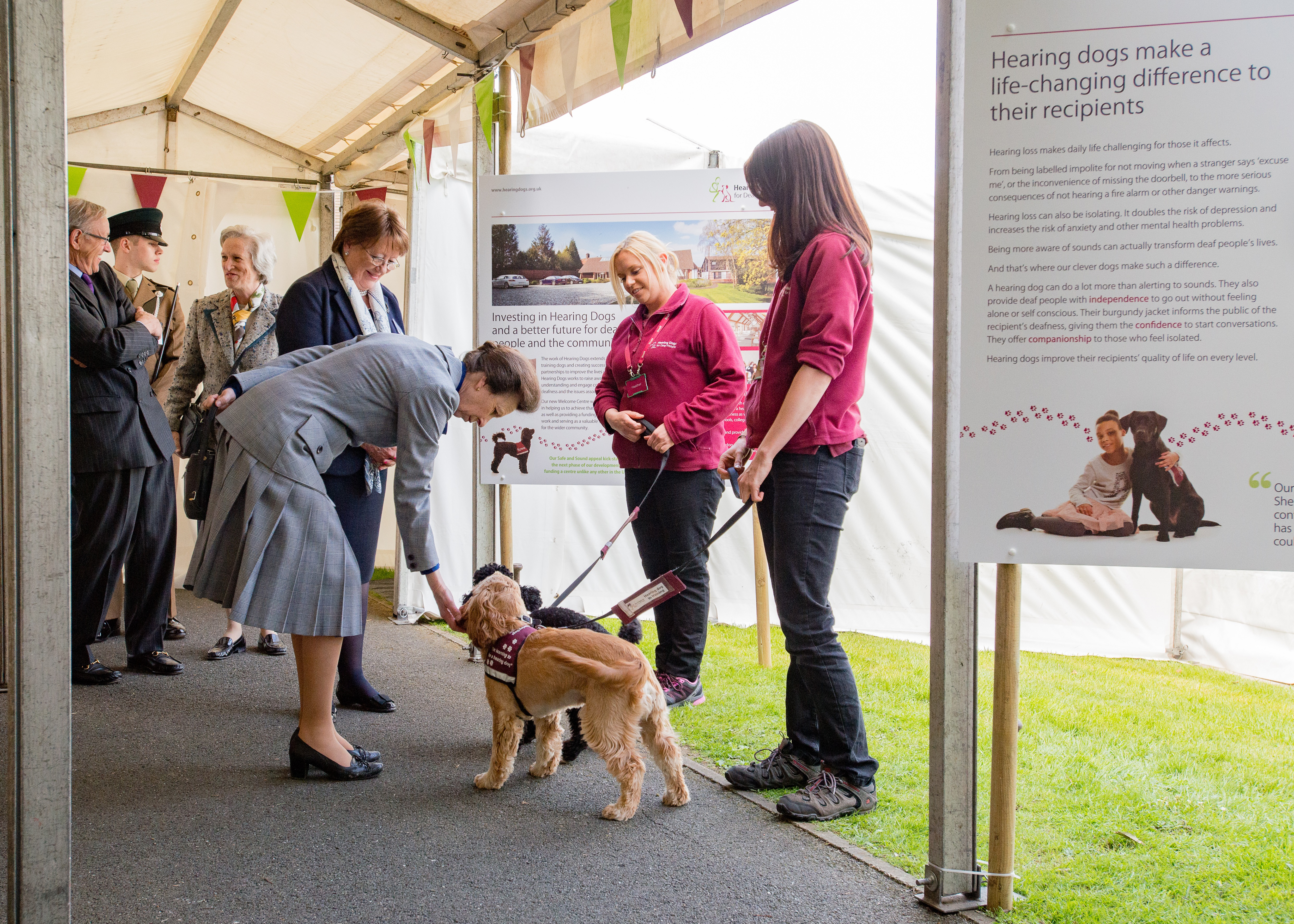 The Princess Royal visits Hearing Dogs for Deaf People | The