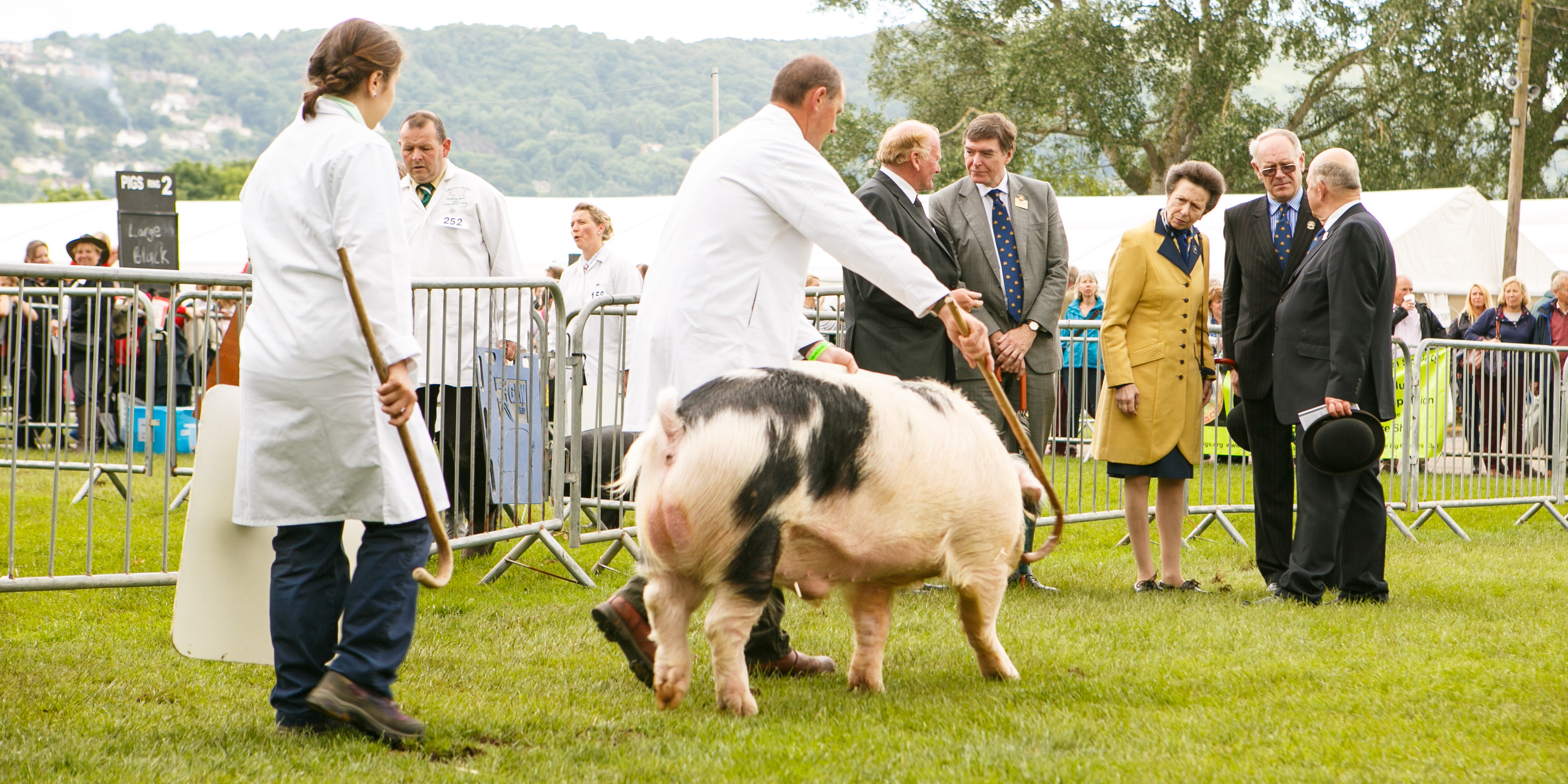 The Princess Royal at the Royal Three Counties Show