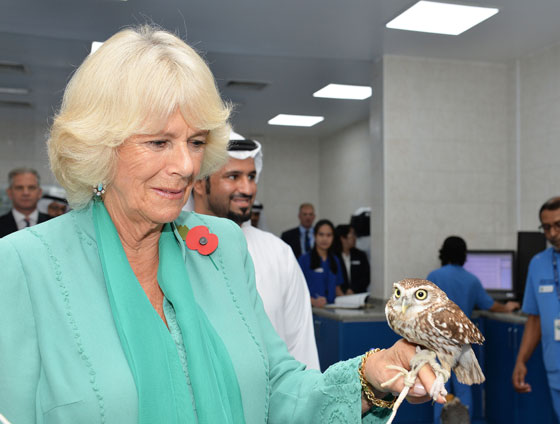The Duchess of Cornwall in the UAE