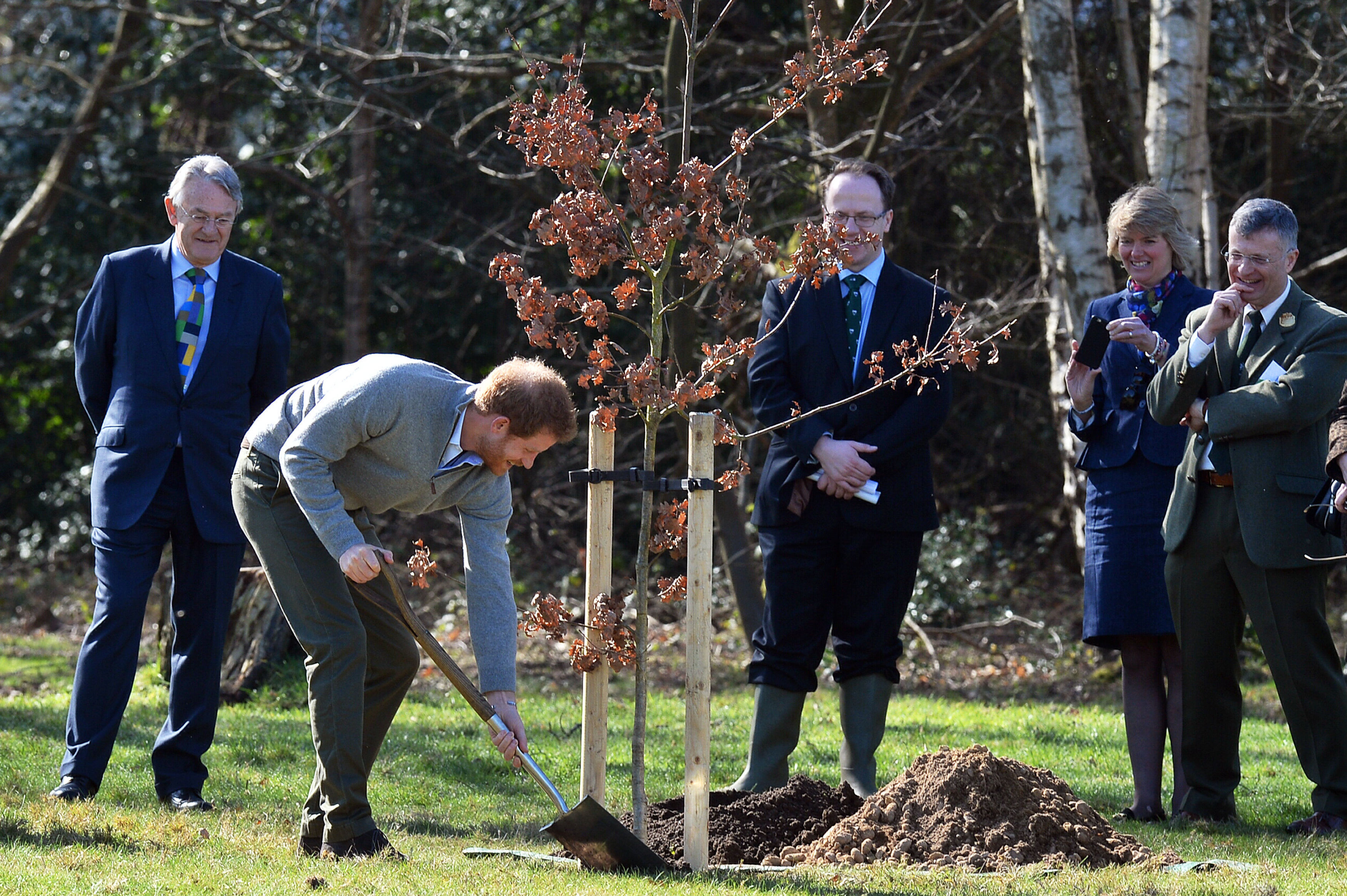 Prince Harry plants a tree as part of The Queen's Commonwealth Canopy