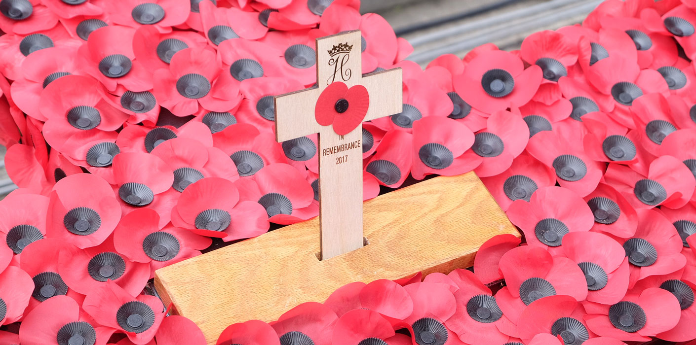 prince harry poppy field of remembrance.