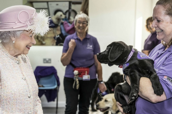 The queen meets a puppy in West Sussex